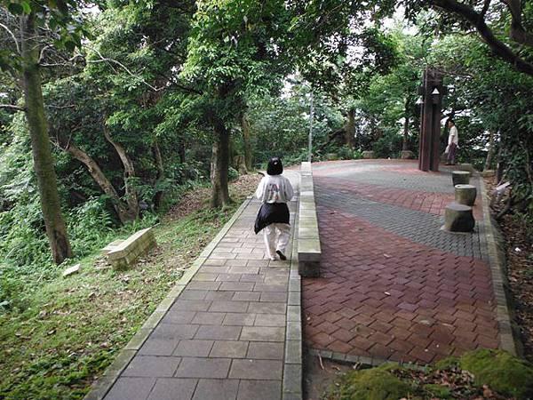 景美山賞桐花.指南宮動物園山 079