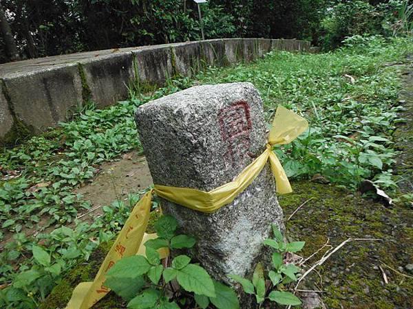景美山賞桐花.指南宮動物園山 087