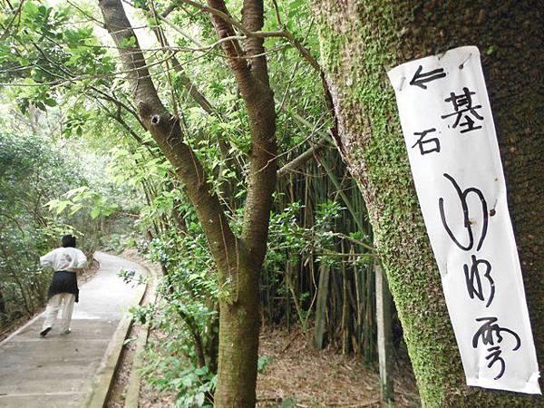 景美山賞桐花.指南宮動物園山 104