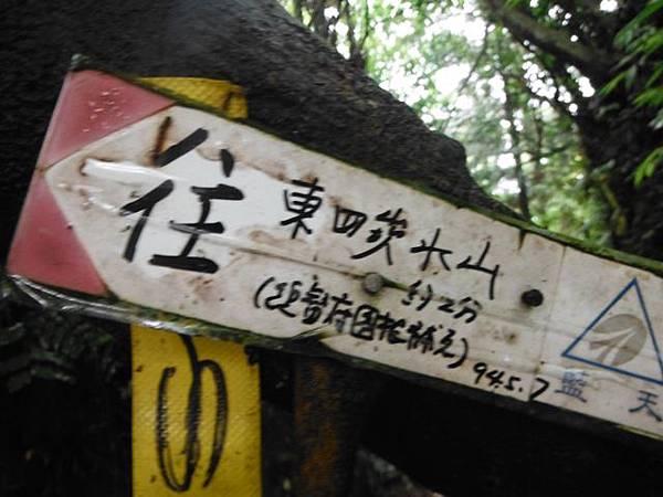 東四崁水山.四崁水山.文大華林植物園.高麗坑山.新高麗坑山 039