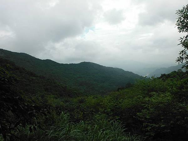 東四崁水山.四崁水山.文大華林植物園.高麗坑山.新高麗坑山 057