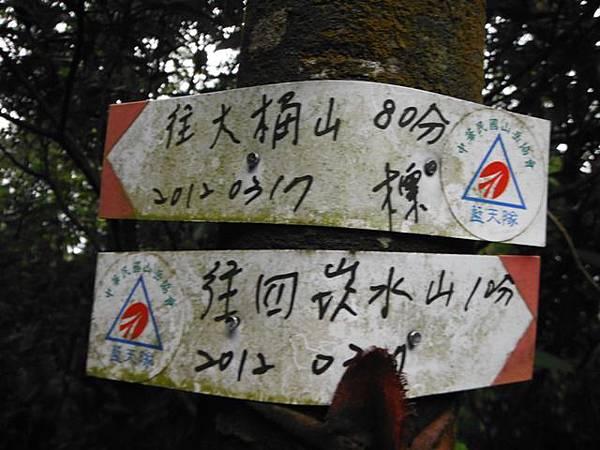 東四崁水山.四崁水山.文大華林植物園.高麗坑山.新高麗坑山 068