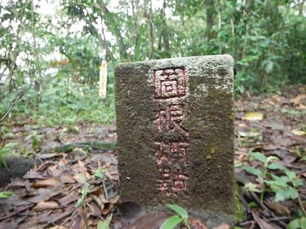 東四崁水山.四崁水山.文大華林植物園.高麗坑山.新高麗坑山 074