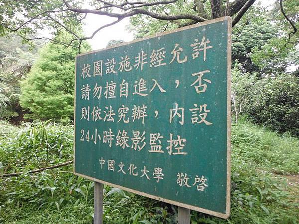 東四崁水山.四崁水山.文大華林植物園.高麗坑山.新高麗坑山 093