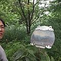 東四崁水山.四崁水山.文大華林植物園.高麗坑山.新高麗坑山 097
