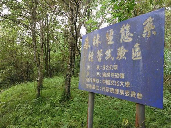 東四崁水山.四崁水山.文大華林植物園.高麗坑山.新高麗坑山 099