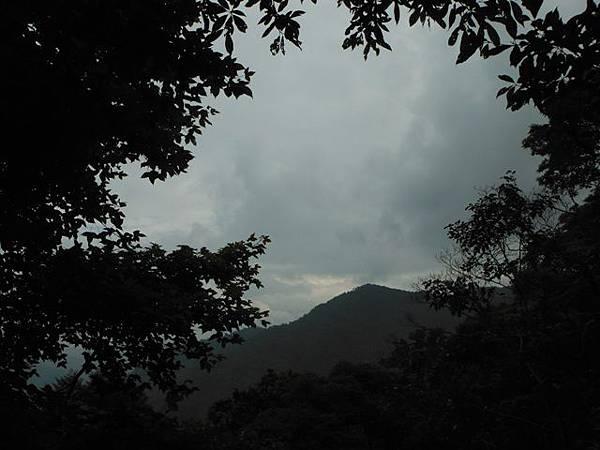 東四崁水山.四崁水山.文大華林植物園.高麗坑山.新高麗坑山 101