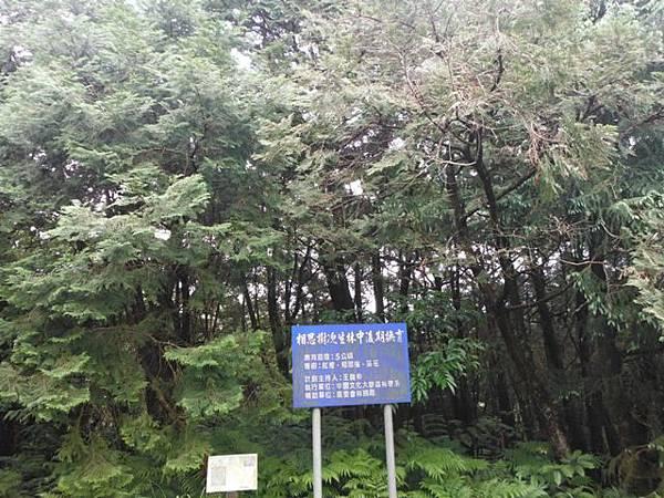 東四崁水山.四崁水山.文大華林植物園.高麗坑山.新高麗坑山 105