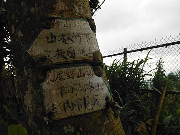 仰德大道登下竹林山 053