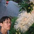 植物園穗花棋盤腳樹 060