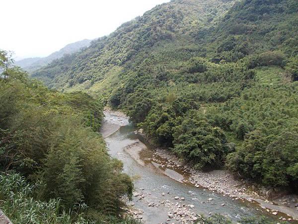 三峽蟾蜍山(畚箕湖山) 015