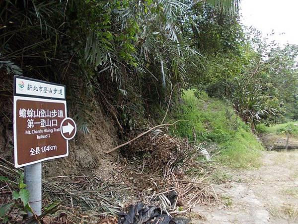 三峽蟾蜍山(畚箕湖山) 026
