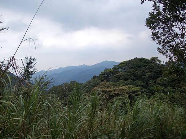 三峽蟾蜍山(畚箕湖山) 069