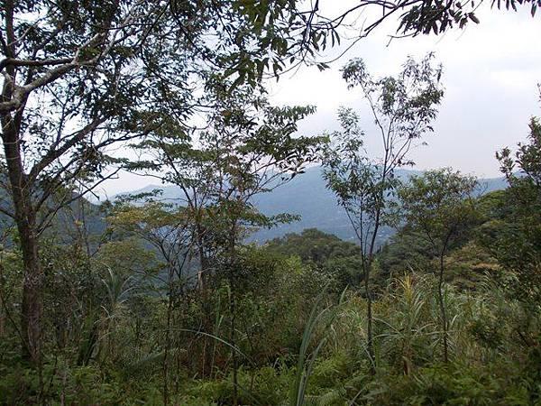 三峽蟾蜍山(畚箕湖山) 077