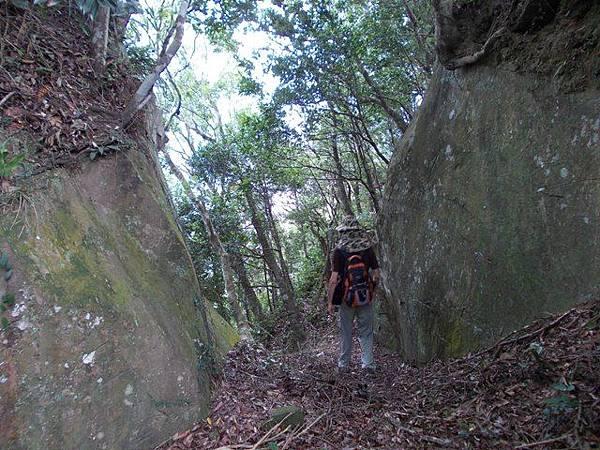 三峽蟾蜍山(畚箕湖山) 079