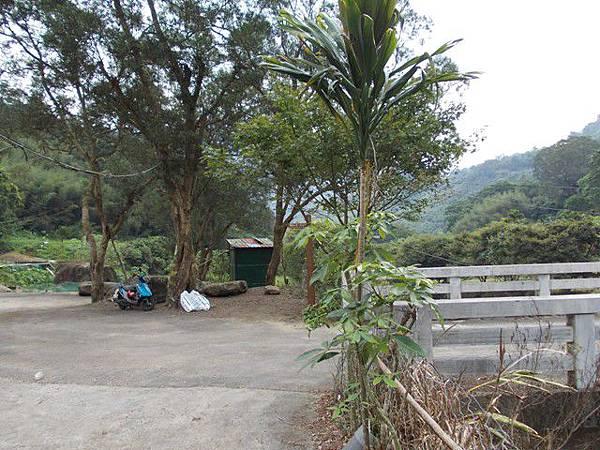 三峽蟾蜍山(畚箕湖山) 096