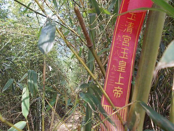 三峽蟾蜍山(畚箕湖山) 098