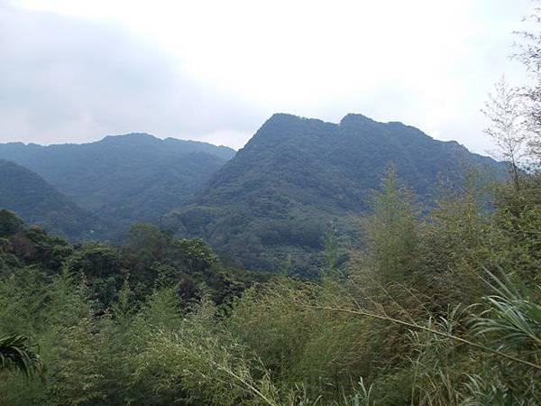 三峽蟾蜍山(畚箕湖山) 099