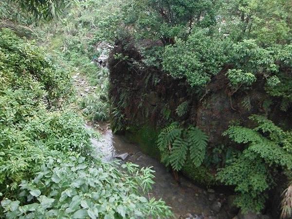 鵠鵠崙.東山瀑布.石門峽谷 089