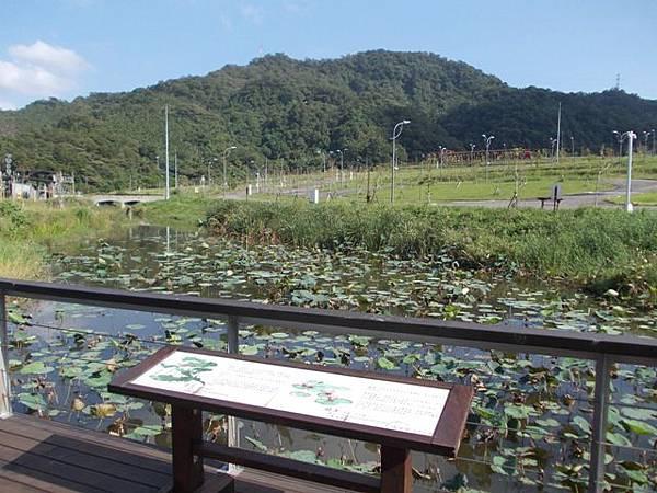 山豬窟山水綠生態公園.山豬窟尖西北峰 022