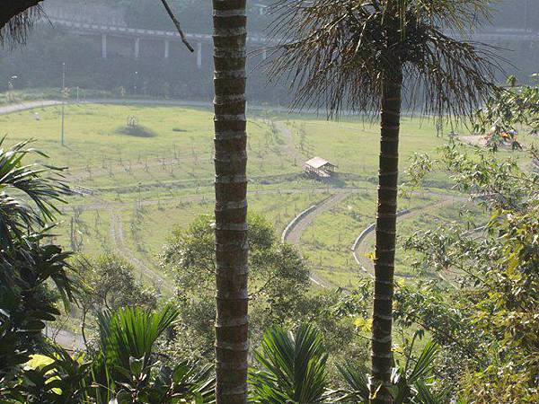 山豬窟山水綠生態公園.山豬窟尖西北峰 074