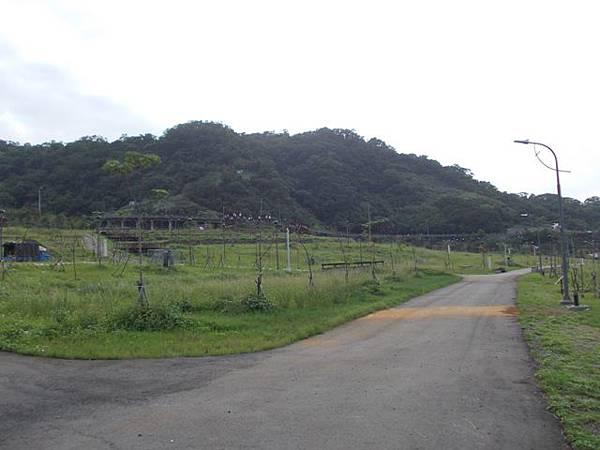 山豬窟山水綠生態公園.山豬窟尖西北峰 093