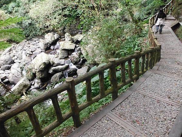 滿月元國家森林遊樂區.滿月圓山 031