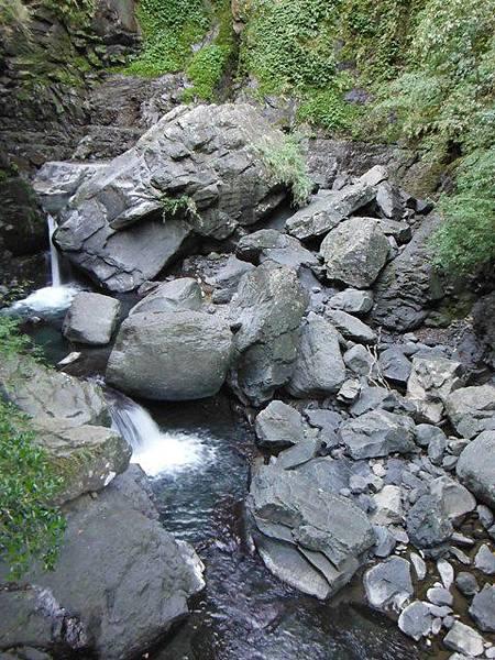 滿月元國家森林遊樂區.滿月圓山 052