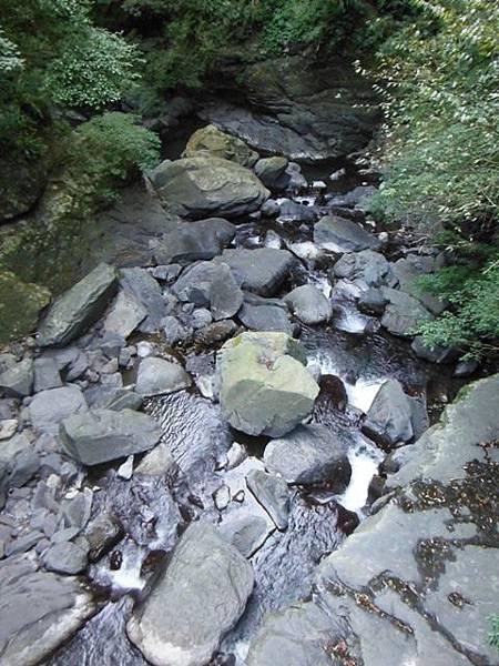滿月元國家森林遊樂區.滿月圓山 053