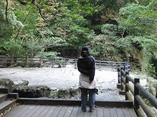 滿月元國家森林遊樂區.滿月圓山 061