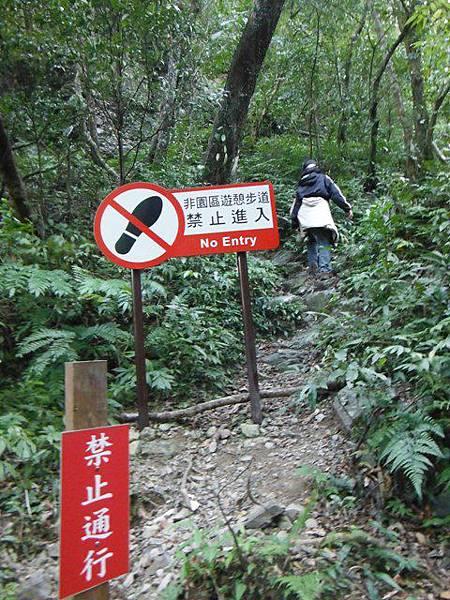 滿月元國家森林遊樂區.滿月圓山 071