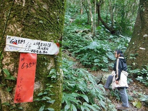 滿月元國家森林遊樂區.滿月圓山 080