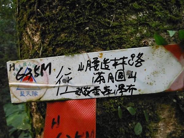 滿月元國家森林遊樂區.滿月圓山 081