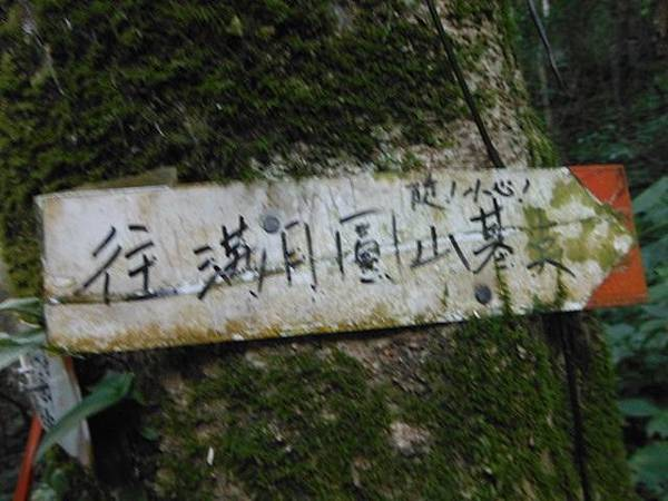 滿月元國家森林遊樂區.滿月圓山 082