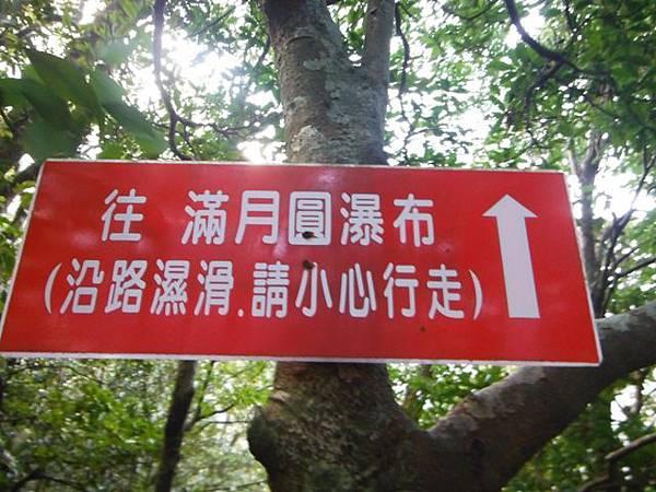 滿月元國家森林遊樂區.滿月圓山 102