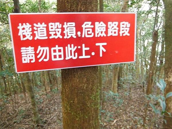 滿月元國家森林遊樂區.滿月圓山 104