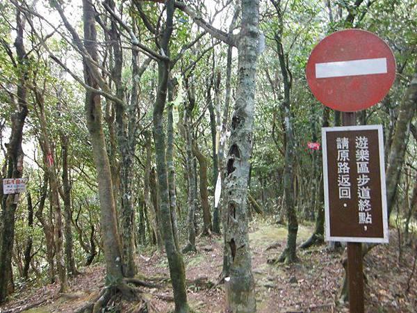滿月元國家森林遊樂區.滿月圓山 105