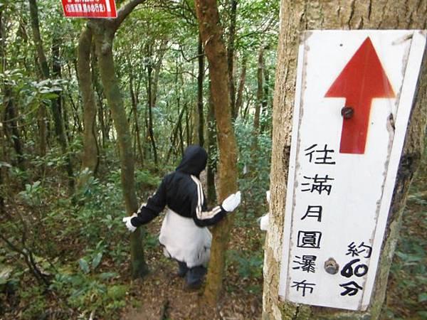 滿月元國家森林遊樂區.滿月圓山 117
