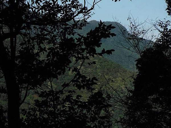 滿月元國家森林遊樂區.滿月圓山 124
