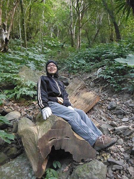 滿月元國家森林遊樂區.滿月圓山 131