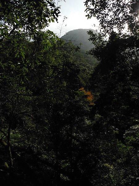 滿月元國家森林遊樂區.滿月圓山 144