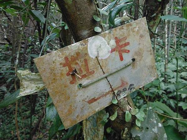 滿月元國家森林遊樂區.滿月圓山 164