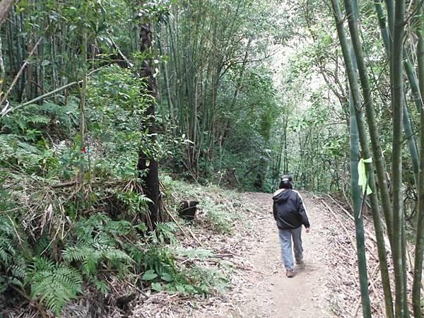 滿月元國家森林遊樂區.滿月圓山 168