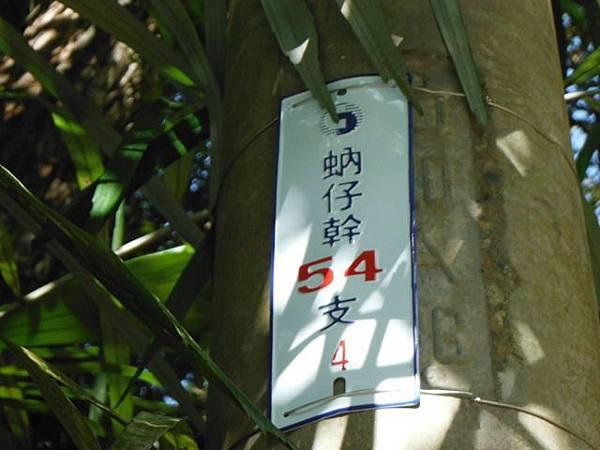 滿月元國家森林遊樂區.滿月圓山 179