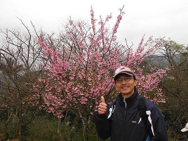 小格頭苗圃賞櫻.雲海山 059