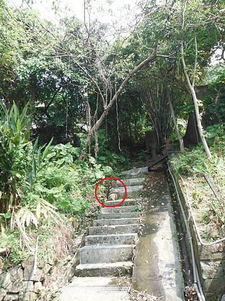 三角埔發電所.水管路步道.第三淨水廠.陽明湧泉 053