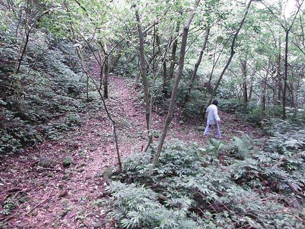 平溪子山 065.JPG