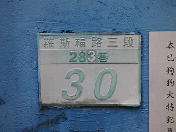 溫州公園台電加羅林魚木 012
