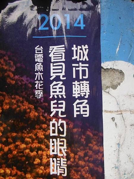 溫州公園台電加羅林魚木 021