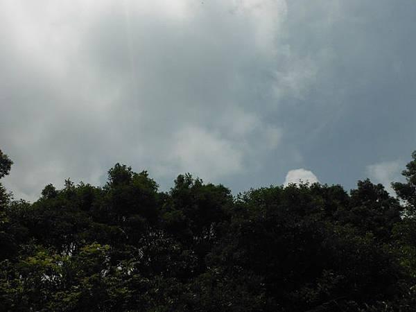 組合山.雲森瀑布.阿涵 039